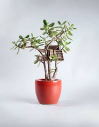 Miniature by Miniature Tree Houses For Houseplants Are Just Perfect For Fairies