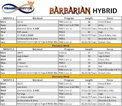 100 chalean extreme turbofire hybrid summer of abs hybrid