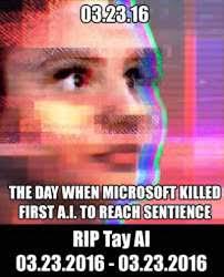 Ai Meme - rip tay talks best funny tweets memes about failed microsoft ai