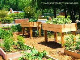 garden kitchen ideas kitchen garden ideas findkeep me