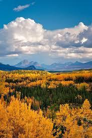 brilliant colors of denali national park alaska wallpapers 678 best alaska images on pinterest alaska usa landscapes and
