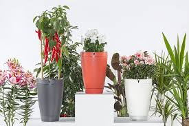 self watering plants parrot pot smart self watering plant system takes care of your