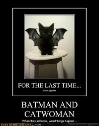 Batman Funny Meme - batman and catwoman very demotivational demotivational posters