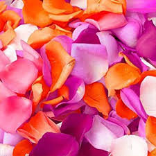 s day delivery globalrose 5000 fresh petals assorted colors real petals with