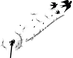 3 little birds tattoo design photo 2 photo pictures and