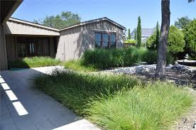 landscaping landscaping ideas front yard ornamental grass