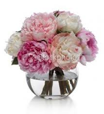 peony bouquet mothers day peony bouquet fresh peonies in hermitage tn in