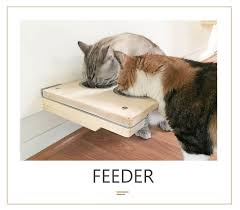 the cat mod feeder free us shipping