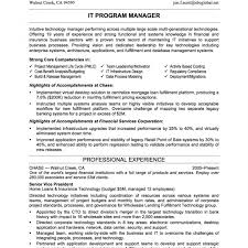 professional experience exles for resume resume objective exle for it professional direct support golf