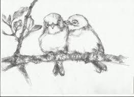 drawn branch sparrows pencil and in color drawn branch sparrows