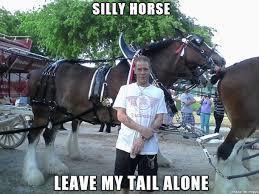 Hey Buddy Meme - hey buddy get off my tail meme on imgur