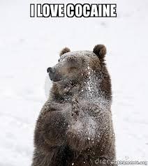 Bear Cocaine Meme - i love cocaine make a meme
