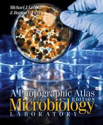 a photographic atlas for the microbiology laboratory 4th ed 2011