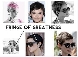 growing back afro american hair after chemo pixie cut 101 growing out a bald head leo with cancer
