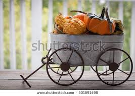 cart pumpkin stock images royalty free images u0026 vectors