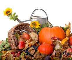 harvest thanksgiving autumn harvest food watering can sunflowers thanksgiving wallpaper
