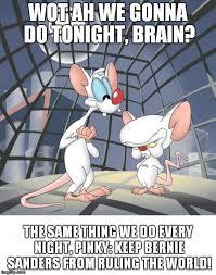 Pinky And The Brain Meme - pinky and the brain meme generator imgflip