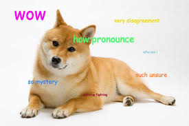 How Do I Pronounce Meme - doge pronunciation how do you pronounce the name of the shibe