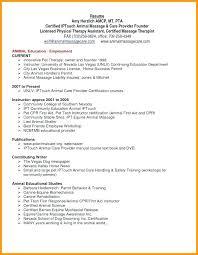 functional resume exles resume webmaster therapist functional resume exles of