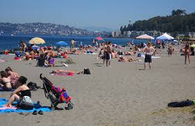 West Seattle Blog West Seattle Crime Watch Newest by The Coolest Neighborhoods In Seattle