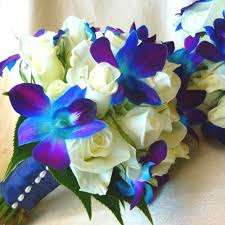 Orchid Flower Pic - best 25 blue orchid bouquet ideas on pinterest blue orchid