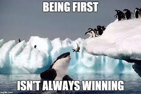 Whale Meme - killer whale meme generator imgflip