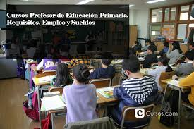 sueldos de maestras de primaria aos 2016 cursos profesor de educación primaria requisitos empleo y sueldos