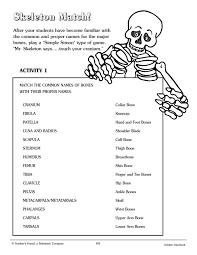 Printable Halloween Skeleton Crafty Symmetric Skeletons Scholastic
