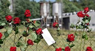 allianz si e social international holocaust remembrance alliance ihra