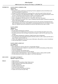 Resume Sales And Marketing Objectives by Sales Admin Resume Samples Velvet Jobs