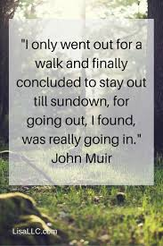 john muir fire quote 120 best quotes images on pinterest bff quotes thoughts and words