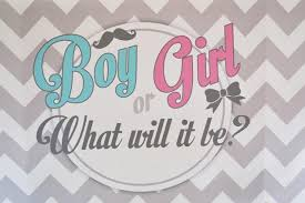 baby shower gender reveal gender reveal baby shower party theme inspired themes 4u