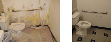 Black Mould In Bathroom Dangerous Toxic Black Mold Removal In Orlando Before And After Premier