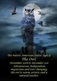 native american zodiac the owl by stephanie laird sagitarius