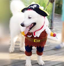 aliexpress com buy high quality pirate dog costume pet clothes
