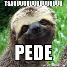 Sloth Meme Generator - tsauuuuuuuuuuuuuuu pede sarcastic sloth meme generator
