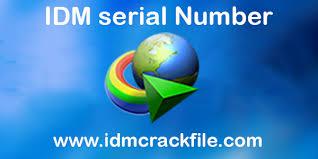full version crack idm idm 6 28 build 14 serial key full version free download download