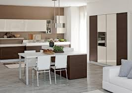 curious where to buy european kitchen cabinets tags european