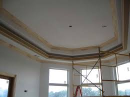 Tray Ceiling Painting Ideas Download Ceiling Paint Home Design