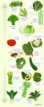 the best low carb vegetables for keto ruled me