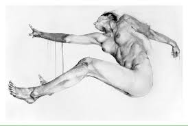 life drawing townsville home facebook