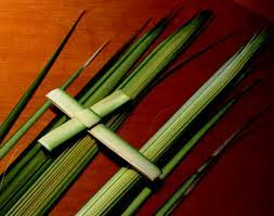 palm crosses for palm sunday what to do with palm branches