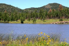 Arizona Lakes images 20 beautiful arizona lakes for fishing and boating jpg