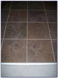 steam cleaners for ceramic tile floors tiles home decorating