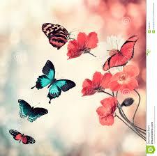 flowers and butterflies stock illustration illustration of artwork