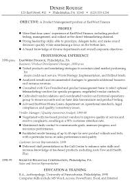 exle resume for resume product manager financial services susan ireland resumes