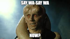 What Now Meme - bib fortuna meme generator imgflip