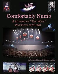 Comfortably Numb Cover Band Pink Floyd News Brain Damage