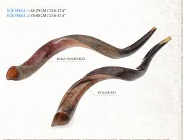 small shofar yemenite shofars kudo barsheshet ribak shofarot israel shofar