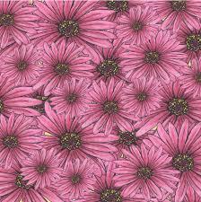 gerber daisies scrapbook paper u2013 smh illustration u0026 design